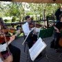 String-Quartet at Jasmine Chapel