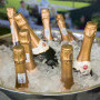 , The Franschhoek Cap Classique & Champagne Festival - 'The Magic of Bubbles'
