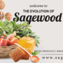 Sagewood Cafe, Nourish to Flourish - The Evolution Of Sagewood Café!