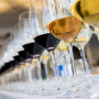 , The Old Mutual Trophy Wine Show – South Africa's best wine judges assemble to focus a spotlight on the Cape's best wines!