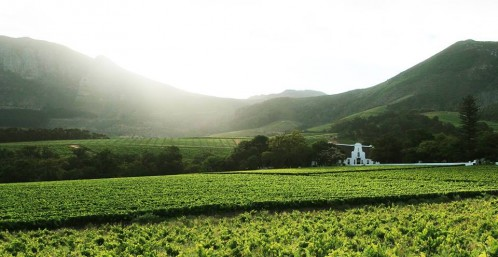 Food and Wine Pairing with Groot Constantia