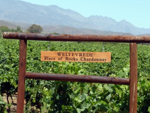 Wine Evening with Weltevrede
