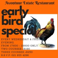 Early Bird Winter Special