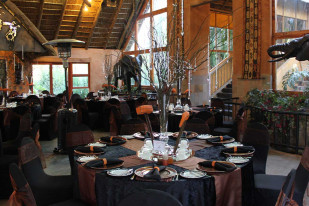 Weddings at Carnivore